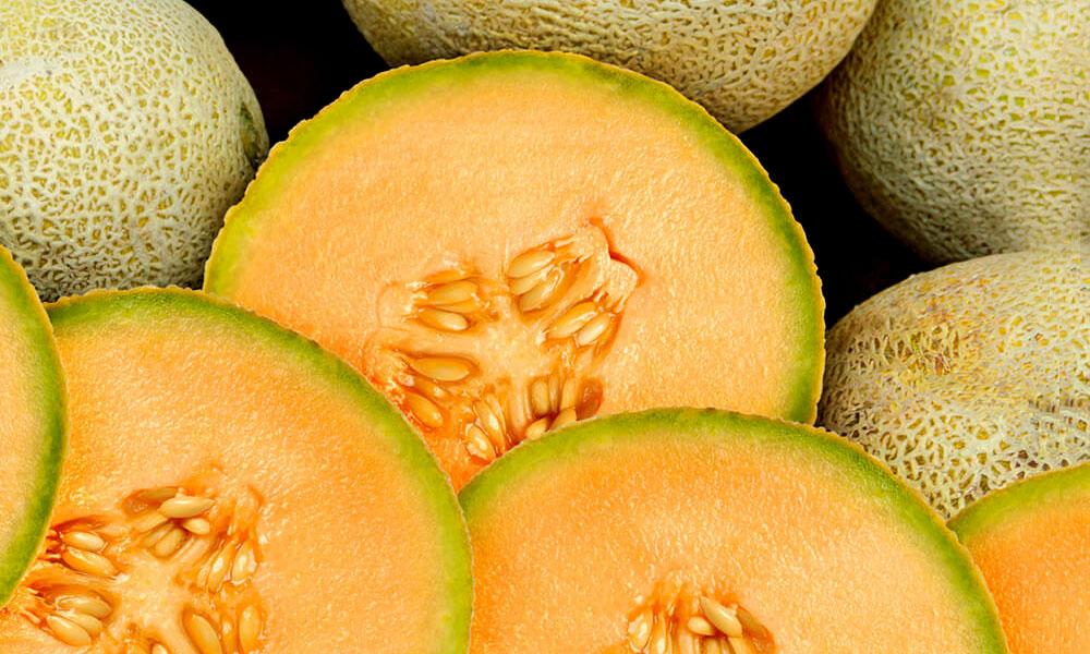 sorbet-melon-2