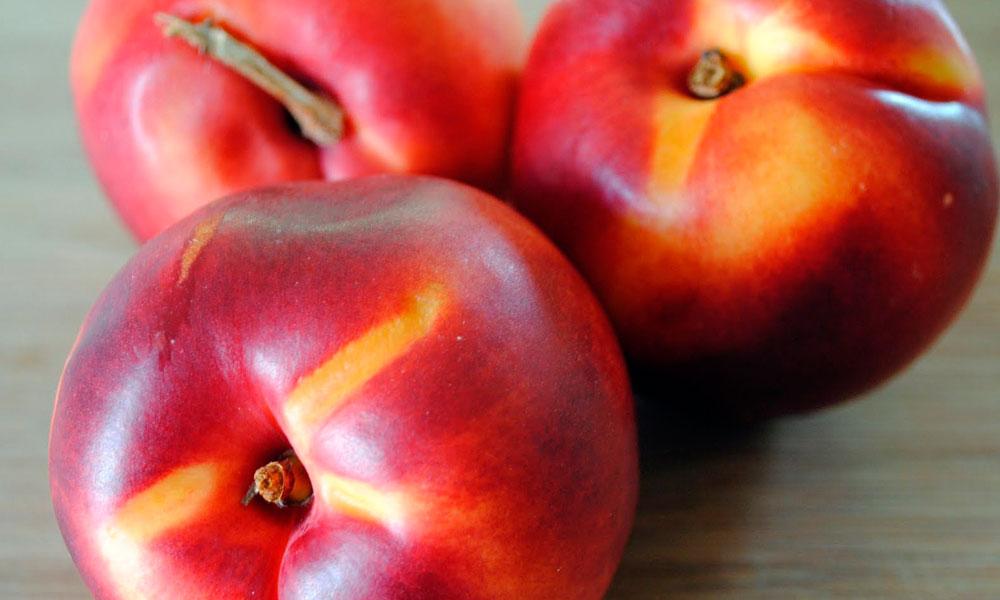 sorbet-nectarine-verveine-citron-2