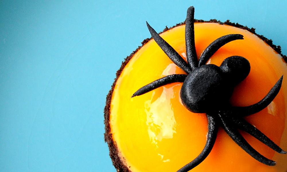 demi-sphere-halloween-araignee-3